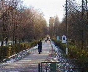 Вид на весенний парк